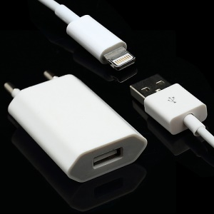 Hot 2 in 1 USB Cable &amp;amp; EU Plug Travel Wall charger for iPhone 5 with Package