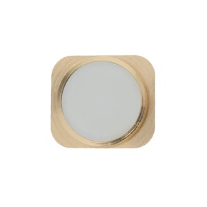 For iPhone 5 Home Button Key Repair Parts - Gold / White