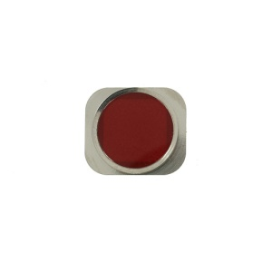 Home Button Key Repair Part for iPhone 5s - Red