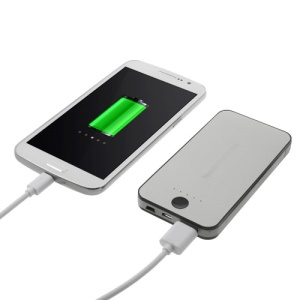 Newonline NE-4S12 6000mAh External Battery Charger for iPhone iPod Samsung HTC LG Sony etc - Silver