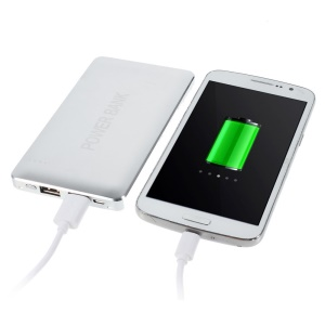 Silver 12000mAh Dual Outputs 2.1A Power Bank for iPhone iPad Samsung LG Phones & Tablets