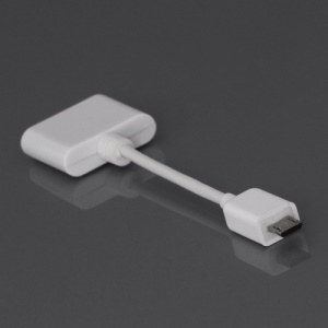 Female Apple 30-pin to Micro USB Male Cable Adapter