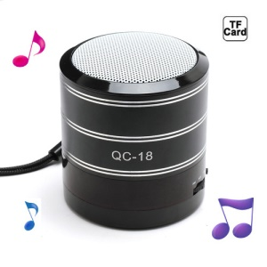Portable FM Radio TF Card Music Player Mini Amplifier Speaker - Black