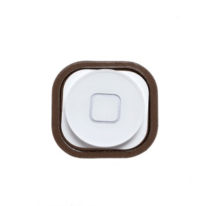 iPod Touch 5 Home Button Key with Rubber Gasket Pad Replacement - White