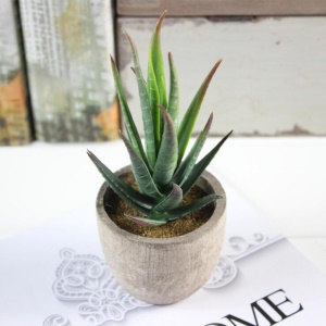 5 PCS Vivid Mini Artificial Succulent Plant Pot Plant Décoration