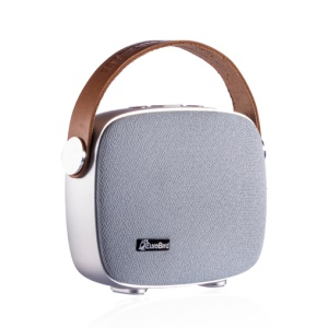 Eurobird BS-M1 Portable Wireless Bluetooth Hands-free Speaker Support NFC FM Radio - Silver
