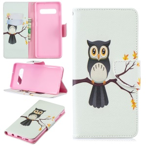 Pattern Printing PU Leather Magnetic Wallet Stand Case for Samsung Galaxy S10 Plus - Owl on Branch