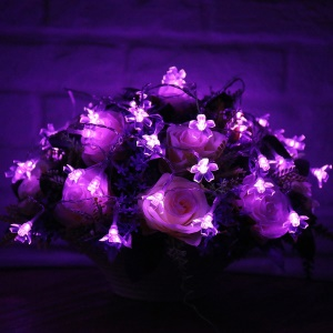 50-LED Solar Powered Waterproof Blossom Pattern LED String Lights - Purple