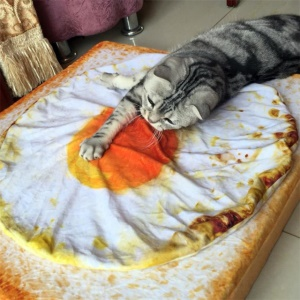 Creative Poached Egg Fried Egg Pet Mat Soft Warm Blanket Quilt for Cat Dog Puppy Sleeping