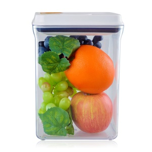2300ML Multi-functional Rectangle Sealed Food Storage Box with Press Button (AK-2300-BAC-C)