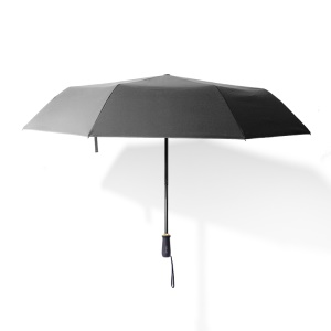 Grey - RAY HORSE 10 Ribs Manual Open Folding Business Umbrella Reinforced Wind-proof Sun Protection Umbrella