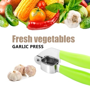 Durable Professional Stainless Steel Easy Cleaning Garlic Press for Kitchen