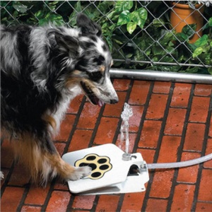 Outdoor Foot Pedal Operated Dog Pet Water Sprinkler Easy Activated Dog Water Fountain Pet Water Drinking Feeder
