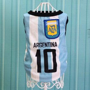Size: XL / White and Blue Number 10 Argentina