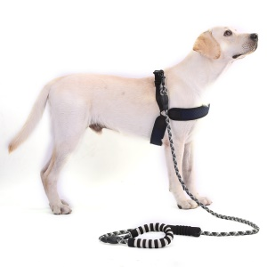 Reflective Nylon Dog Pet Leash Round Traction Rope with Dual Padded Handle - Black