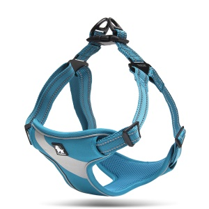 TRUELOVE No-pull Dog Front Range Harness Outdoor Adventure Pet Vest with Handle (TLH5991) - Blue / Size: S