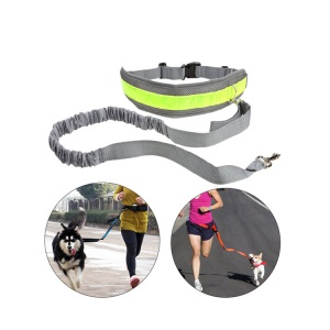 Dog Training Waist Belt with Zipper Mesh Pocket Hands-free Dog Walking Leash - Grey