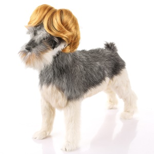 Funny Amusing Pet Curly Hair Costume Wig - Style C