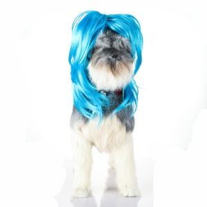 Funny Pet Curly Hair Costume Wig for Dog - Style D