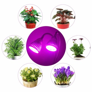 10W Red Blue Light Dual Head 360 Degree Rotary Gooseneck LED Grow Light for Indoors Plants - EU Plug