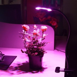 10W Dimmable LED Grow Light with 360 Degree Rotating Gooseneck and Clip for Indoor Plants
