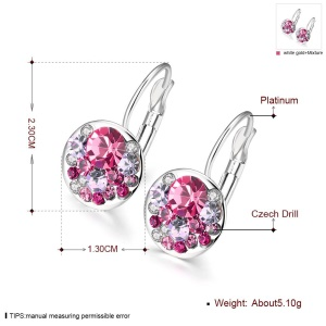 Dazzling Czech Crystals Round Earrings for Women - Platinum Plated Purple