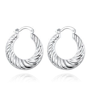 E697 Amazing Round Silver Plated Copper Earrings for Ladies Girls