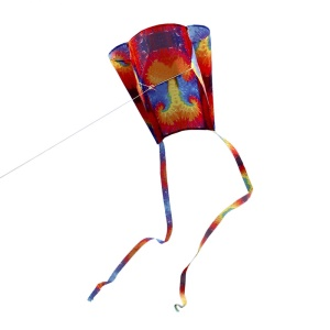 Colorful Parafoil Kite with 200cm Tails Outdoor Soft Fly Kite Toy - Style 1