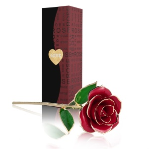 Forever Love Beautiful Long Stem Gold Color Foil Trim Red Rose 24K Gold Color Plated Rose