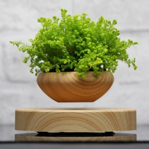 LED Magnetic Suspended Potted Plant Wood Grain for Home Office Decoration