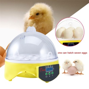 Temperature Control Unique Automatic 7 Eggs Turning Incubator Chicken Hatcher - US Plug