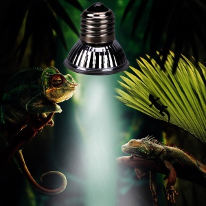 25W Turtle Basking UV Light Portable E27 Full Spectrum Reptile Lamp
